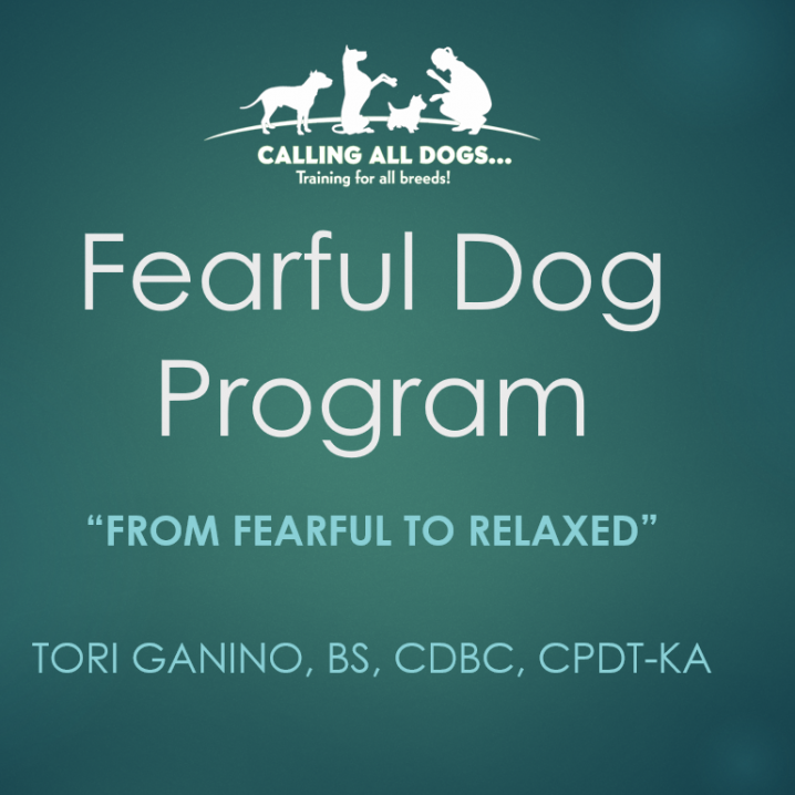 Fearful Dog Program