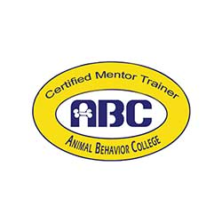 Certified Mentor Trainer